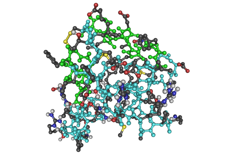 800px-2GF1_Insulin-Like_Growth_Factor_Nmr_Minimum_Average_Structure01