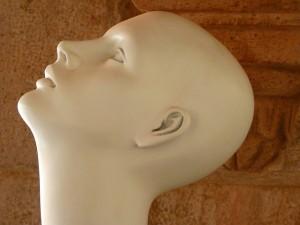 head-43440_640