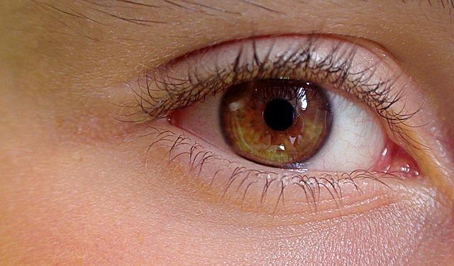 eye-419646_640
