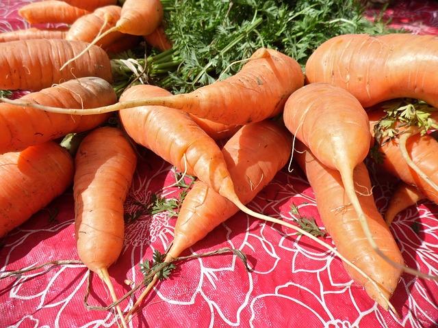 carrots-101255_640